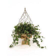 Silk Mountain Ivy Round Topiary in Urn