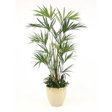 "90"" Deluxe Kentia Palm Tree in Glazed Stoneware Planter"