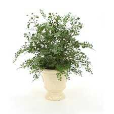 Silk Maiden Hair Fern Floor Plant in Urn