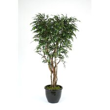 <strong>Distinctive Designs</strong> Ruscus Smilax Tree in Planter