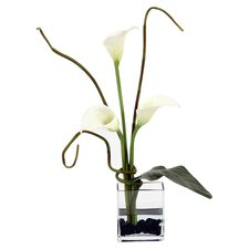 Silk Arrangement in Rectangular Glass