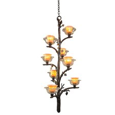 Cottonwood 8 Light Chandelier