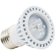 5W 120-Volt (2700K) LED Light Bulb with 40 Degree Beam Angle