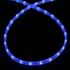 Mini Rope Light in Blue