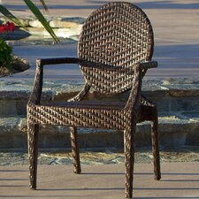 Giesel PE Wicker Outdoor Chair
