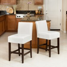 Walter Counter Bar Stool (Set of 2)