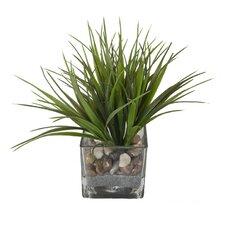Faux Grass in Square Glass Vase