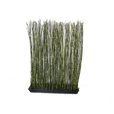 Bamboo Rectangular Hedge