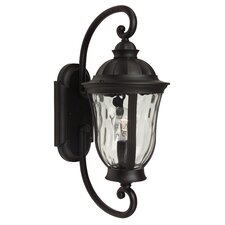 Frances 1 Light Outdoor Wall Sconce