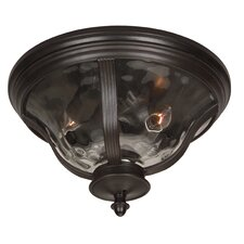 Frances 2 Light Outdoor Flush Mount