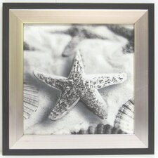 Kitchen Starfish Framed Graphic Art