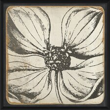 <strong>Blueprint Artwork</strong> Vintage Flower Framed Art