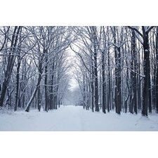 Winter Scene Walkway Through Trees Wall Art - 60cm x 90cm