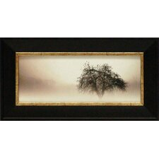 <strong>Artistic Reflections</strong> In the Mist I Framed Art