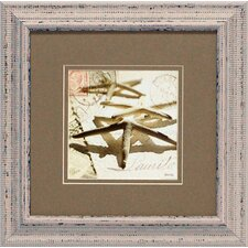<strong>Artistic Reflections</strong> Postal Shells III Framed Art