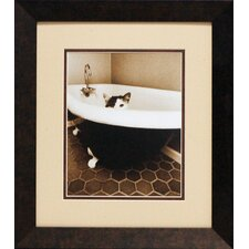 Kitty III Framed Photographic Print