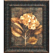 Antique Hydrangea I Framed Painting Print