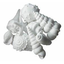 Porcelain Sea Shells 9 Piece Set