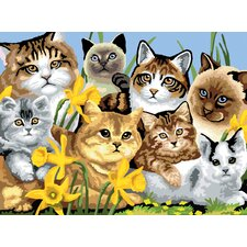 Painting by Numbers Junior Large Cats Montage Set