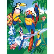 Painting by Numbers Junior Small Tropical Bird Set