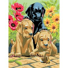 Painting by Numbers Small Labrador Pups Junior Set