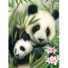 Painting by Numbers Junior Small Panda and Baby Set