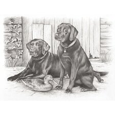 Sketching Pencil By Numbers Labradors Sketching Pencil (Set of 4)