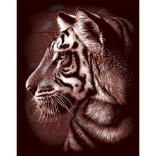 Oasis Tiger Scraperfoil