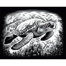 Turtle Scraperfoil