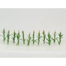 Architectural Model Corn Stalk (Set of 12) (Set of 12)