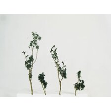 Architectural Model Foliage Tree (Set of 24)