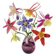 Flat Flowers Window Stickers Originals in Aquilegia