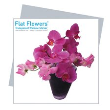 Flat Flowers Greetings in Orchid (Set of 6)