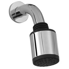 Showerhead with Arm