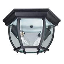 French 2 Light Flush Mount