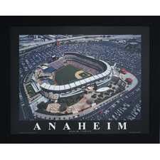 Anaheim Baseball Photographic Print