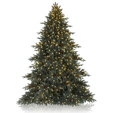Aspen Christmas Signature 6.5' Silver Fir Artificial Christmas Tree