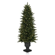 Aspen Christmas Signature 4.5' Highland Estate Potted Spruce Christmas Tree
