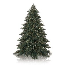 Napa Christmas Signature 12' California Baby Redwood Artificial Christmas Tree