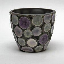 Noshi Cup
