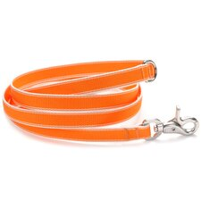Stripe Hype Dog Leash