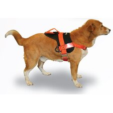 Raider Dog Training Harness
