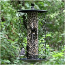 <strong>Birdscapes</strong> The Preserve Bird Feeder
