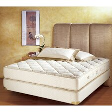7 Zone Latex Foam Mattress