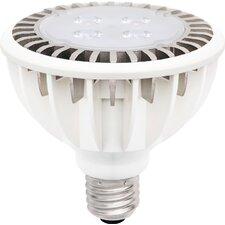 10W 110/120-Volt LED Light Bulb