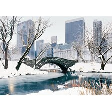 3D Central Park Seasons Framed Painting Print