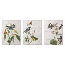 3 Piece Birds with Script Graphic Art Set (Set of 3)