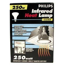 250W 120-Volt Light Bulb