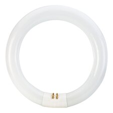 22W 61-Volt (3000K) Fluorescent Light Bulb