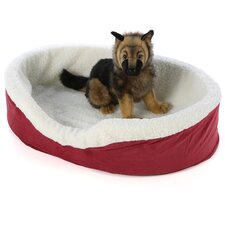 Quiet Time e'Sensuals Orthopedic Bolster Dog Bed